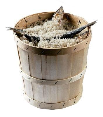 Как засолить сайру в домашних условиях без уксуса