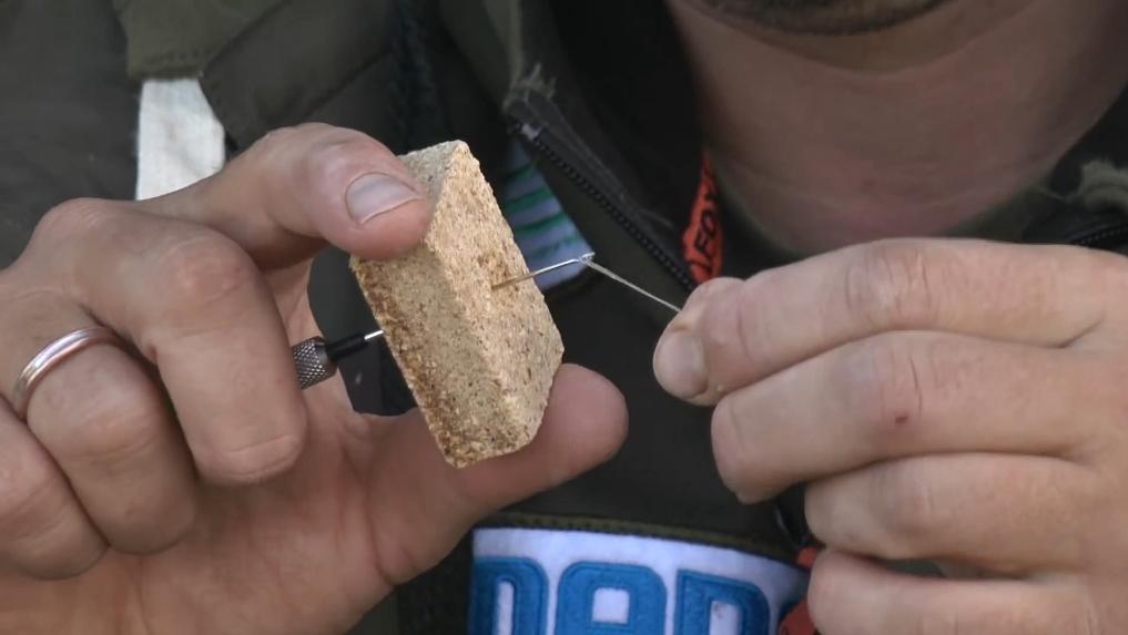 ловля карпа на жмых видео