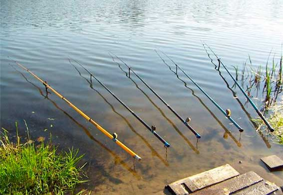 удилище для рыбалки с берега